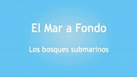 Logo-video-los bosques marinos